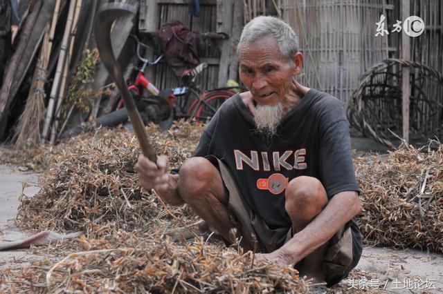 为什么如今很多农民争当贫困户?原因值得深思