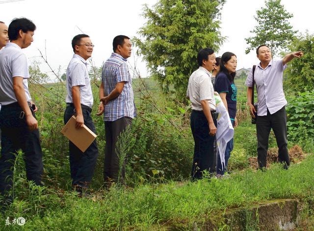 农村土地新政策出台,新增人口可以通过这样方式获取土地