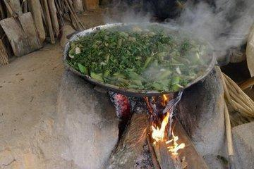 这东西农村人都拿来喂猪,如今城里人却抢着吃!