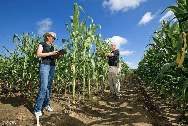 农业新模式,精准农业、蓝色农业、白色农业、质量农业,你了解吗
