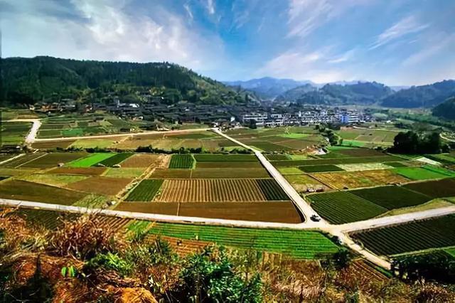 农业农村部发话了!一批土地托管新型农业经营主体将强势崛起!
