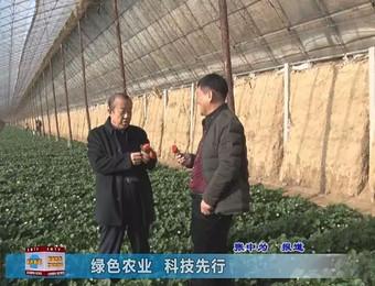 民生资讯:绿色农业,科技先行