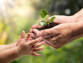 国家将给予政策扶持!2019新农民致富方向:绿色农业
