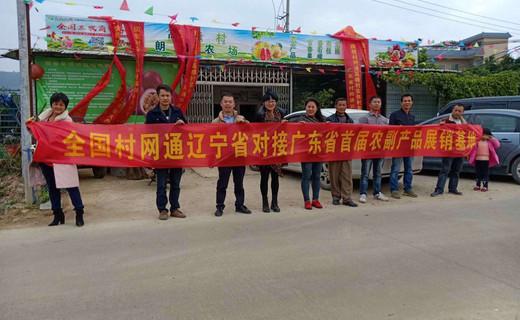 村网通—探索乡村振兴道路上的指南针