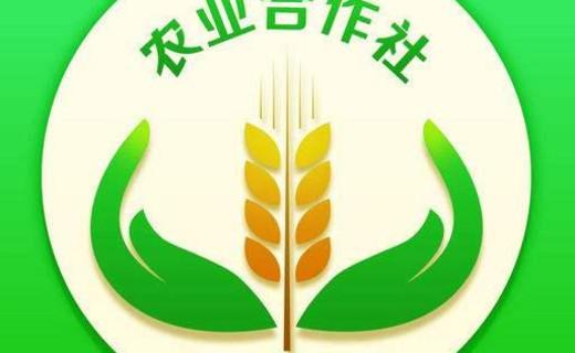 农村利好政策,新型农业经营主体有福了
