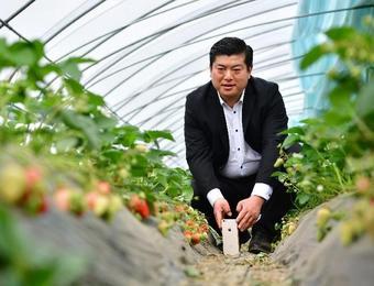 """""""网红""""农民炼成记"""