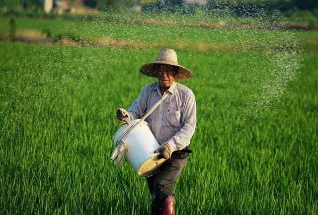 农民,需要被全社会尊重!