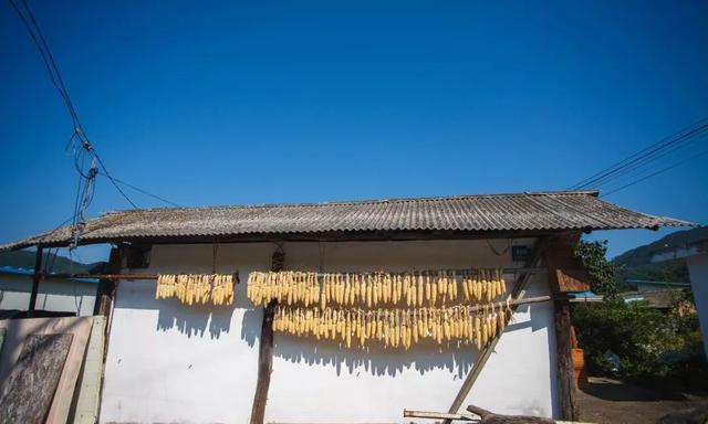 乡村振兴是减少农民而不是增加农民,不是所有乡村都要振兴!