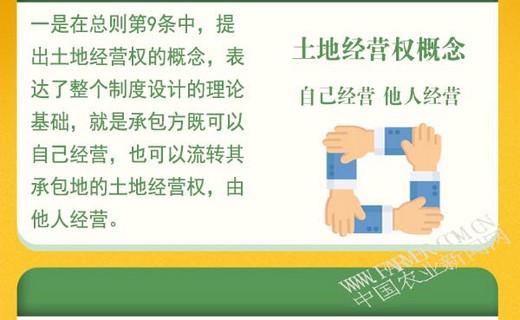 """图解:修改后农村土地承包法,如何体现""""三权分置""""?"""
