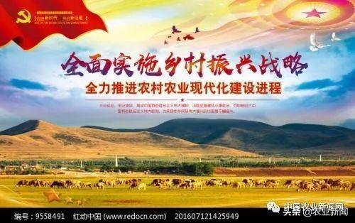 中国未来几年内,乡村振兴战略的10大工作内容全在这里!请您过目!