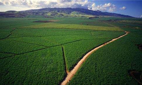 为什么说以色列农业模式不适合在我国推广?