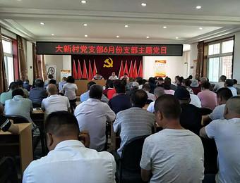 大新村党支部开展6月份支部主题党日活动