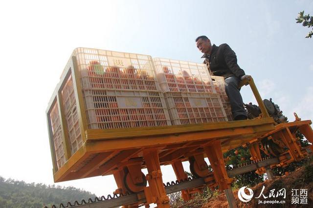 日前,江西赣县王母渡镇下排村春秋果业基地,工人利用山地轨道车将一筐筐脐橙运下山去。