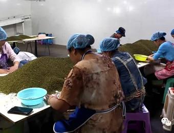 水塘坝这个农产品交易市场了不得!交易额将要突破38亿元了!