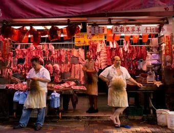 缺猪,猪肉上涨不奇怪,青菜和鸡蛋为啥也涨钱了?看完心里有数了