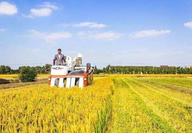 家庭农场主看过来,11部门联合印发指导意见,家庭农场将迎来哪些政策红利?