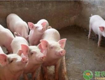生猪养殖用地能否占用永久基本农田?看看他们是怎么回答的