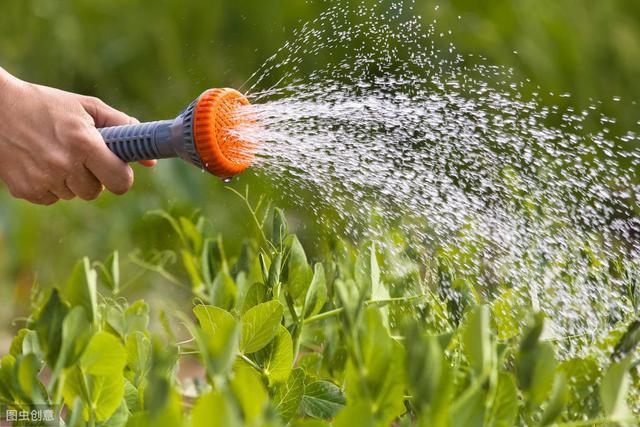 明年是旱还是涝?降水多少?看看冬至的表现就知道了