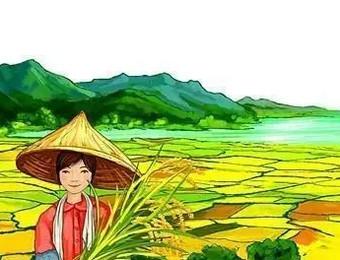 【新农人】农业农村部推介的全国农村创业创新带头人(附名单)