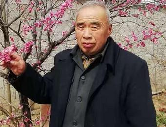 安徽省书画名家————杨勤亮