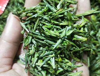高山生态茶上市了