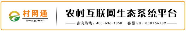 村网通文章广告.jpg