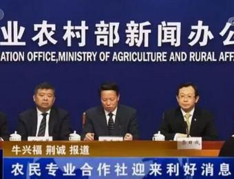 农业农村部:合作社好消息!218.6万个农民合作社将迎来发展机