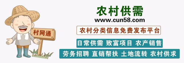 村网通宣传-文章4.jpg