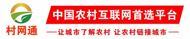 村网通文章页尾广告04.jpg