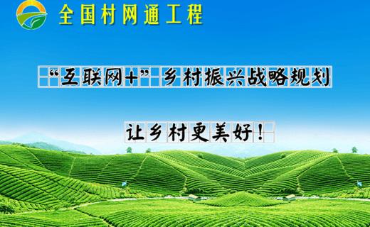 全国村网通工程:每个农村一个网站,每个农民一个网店