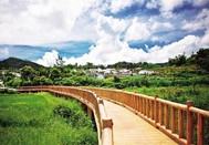 留住乡愁又有奔头——海南博鳌的乡村发展之路