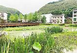 乡村振兴路上的休闲农业和乡村旅游