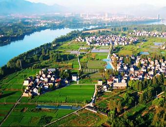农村经济持续发展 乡村振兴迈出大步