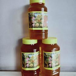 东北特产长白山天然野生椴树花蜜1000g瓶装产地直销包邮