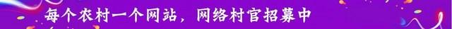 网络村官_新.jpg