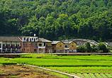 乡村散记:失落的农村