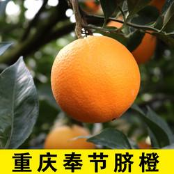 重庆奉节脐橙新鲜10斤当季水果整箱包邮