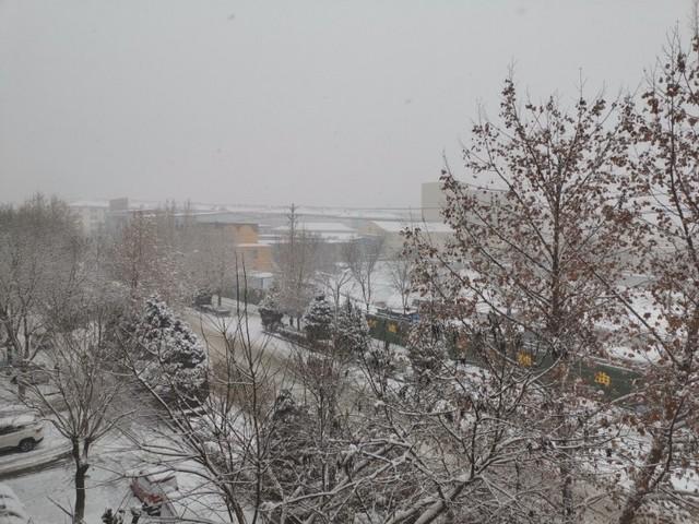 新年首场大雪......