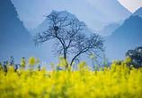 等到春天,我就要去云南