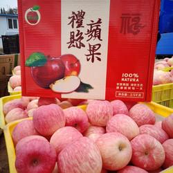 甘肃礼县富士苹果优惠12斤装直径>75mm  59.8元包邮