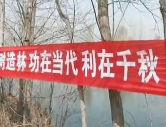 馆陶县创建国家园林县城全民倡议书
