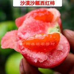 沙瓤西红柿/腾格里沙漠西红柿/5斤包邮