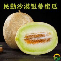 【包邮】甘肃民勤沙漠银蒂蜜瓜9斤
