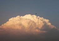 """成安县惊现美丽的""""蘑菇云"""""""