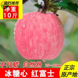 礼县富士苹果优惠12斤装直径>75mm59.8元包邮