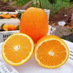 重庆奉节脐橙20斤装包邮