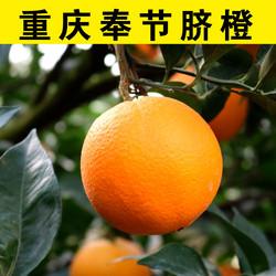 重庆奉节脐橙10斤装包邮