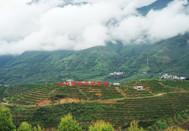 高原农业、绿色健康!