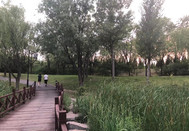 2021年7月18日拍摄于青州森林公园