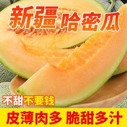 新疆吐鲁番哈密瓜西州蜜25号新鲜水果当季鲜产地现摘现发顺丰空运